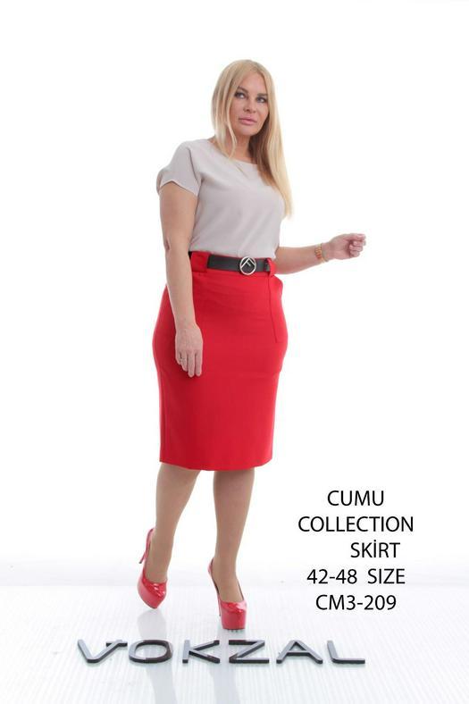 Skirts Plus Siizes 928955