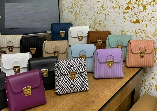 Ladies Bags 1012681